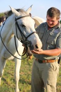 Horses - 078 (IMGL0932 - 280 - 20171216 - (Original Filename IMGL0932))